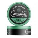 Cannadips - CBD Pouch Tins - Natural Mint Flavor